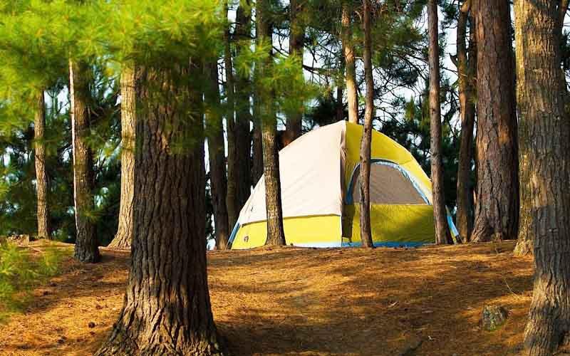 Nainital Pangot Camping