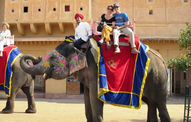 Camel Ride B