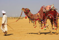 golden triangle tour camel safari jaisalmer rajasthan