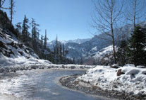 golden triangle tour manali himachal